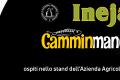 expo-pieve-di-teco-2018-banner-sito
